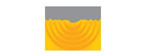 FRASTE logo